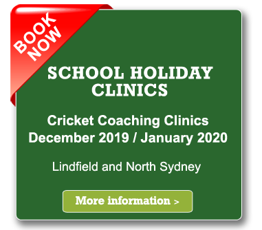 christmas holidays cricket clinics